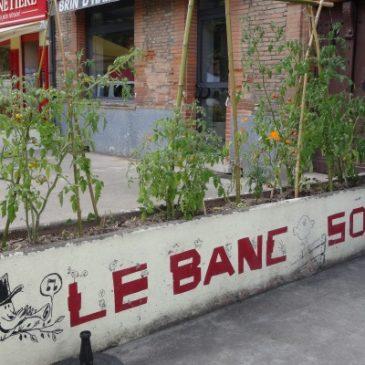 29/10/2016 – Plantation Bac Incroyables Comestibles du Banc Sonore