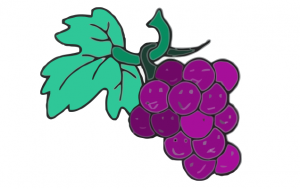 sel_-_les_raisins_vectorized