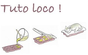 savon_tuto_loco