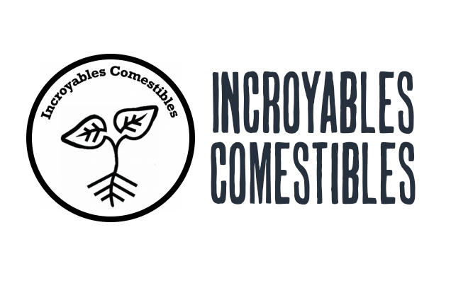 21/05/2017 – Ronde des «Incroyables Comestibles»